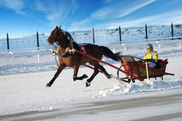 KG 28 - Meet the New Year in Kyrgyzstan!/7 Day Trip