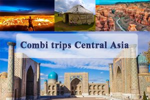 Combi Trips Central Asia